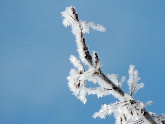 s-雪の華
