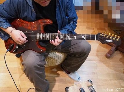 ネコギター