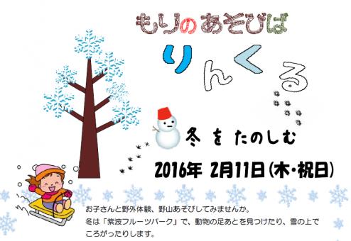 りんくる冬1