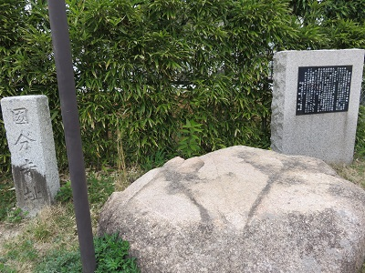 IMG_2401 国分寺
