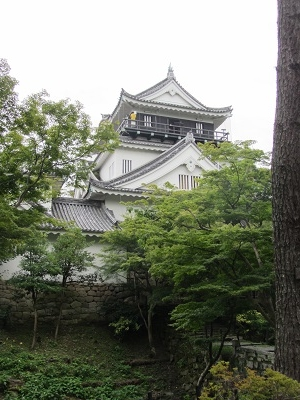IMG_8050 岡崎城