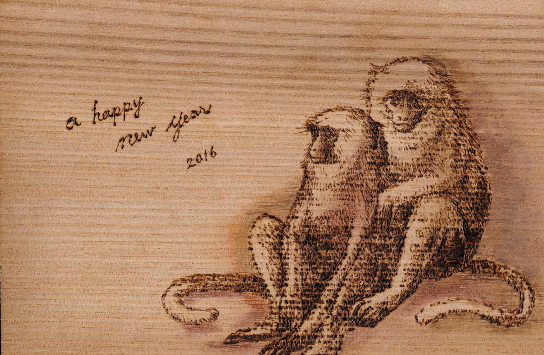 2016ハヌマンラングール