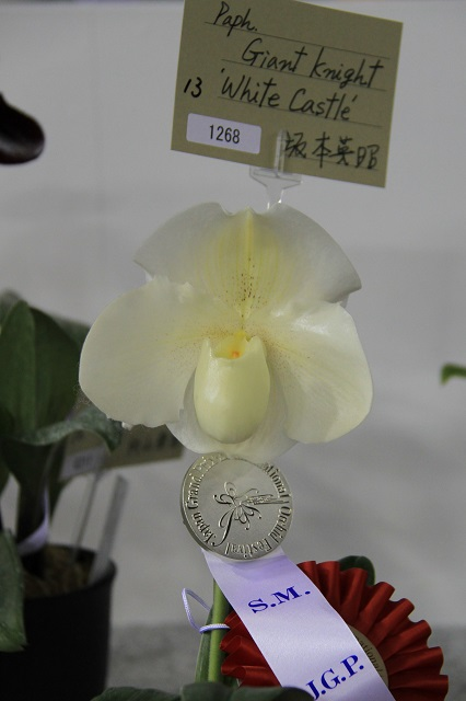"""Paph.Giant Knight """"White Castle"""""""