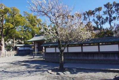 鎌倉五山8
