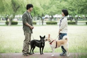 映画『犬に名前をつける日』ワンシーン