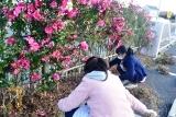 草刈 (2)