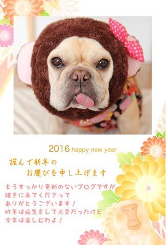 2016_1_2.jpg