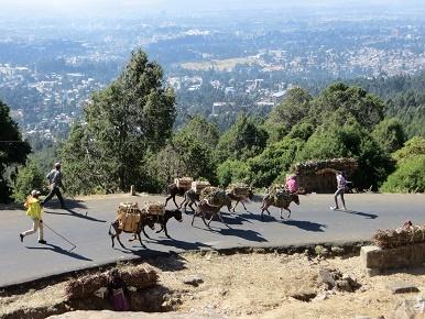 ethiopia1-2.jpg