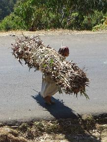 ethiopia1-3.jpg