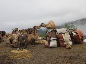 ethiopia2-2.jpg