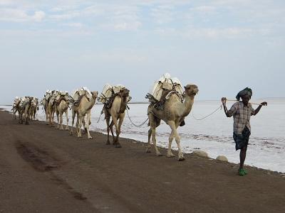 ethiopia2-20.jpg