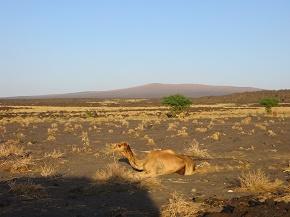 ethiopia3-8.jpg