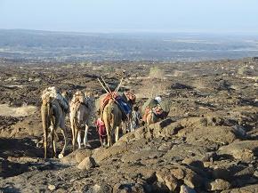 ethiopia4-4.jpg