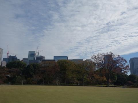 秋が深くなってきました