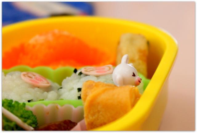 青森県 弘前市 保育所 保育園 幼稚園 出張 写真 撮影 カメラマン イベント 祭り 行事 インターネット 写真販売
