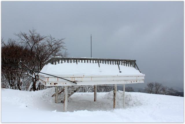 青森県 青森市 梵珠山 かんじき 登山 スノーシュー ハイキング 青森県立自然ふれあいセンター 野鳥 コゲラ