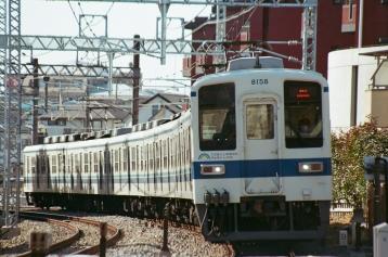 41620029.jpg
