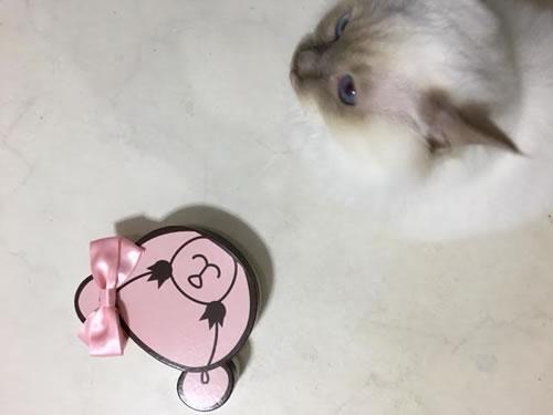サマンサ タバサ ベアークッキー & ミカエル