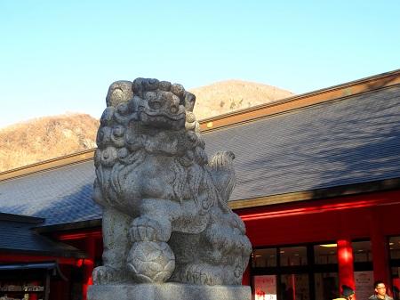 024赤城神社の狛犬