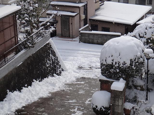 s-11:36雪かき