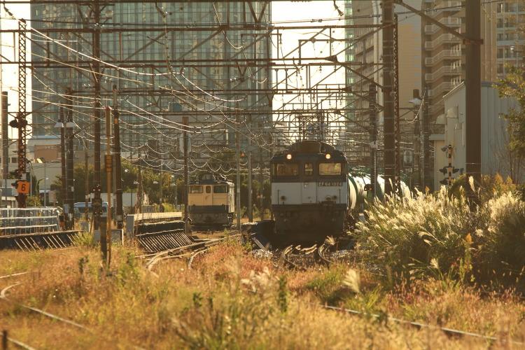 20151103千鳥橋2-2