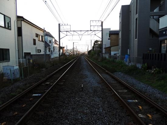 DSCN2205.jpg