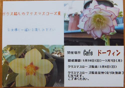 DSCF9726.jpg
