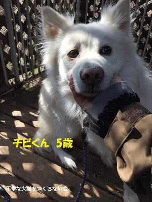 201603040019139e2.jpg