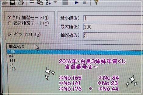 2016年白黒3姉妹年賀くじ