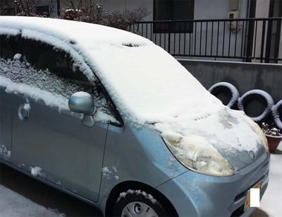 160207_積雪_ライフ