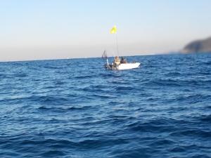 DSCN1416 あひさん船を激写