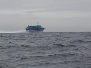 DSCN1689 高速船が通りすぎます
