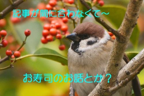 020_20151218221803f73.jpg
