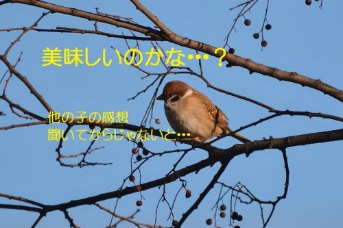 020_2016011218431982d.jpg