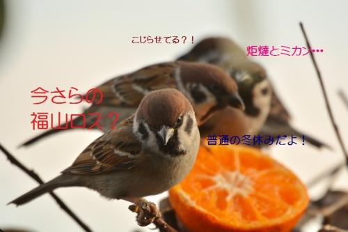 020_20160117213246139.jpg