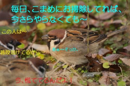 030_201512262300099f4.jpg