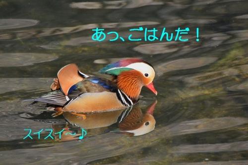030_20160104185039d39.jpg