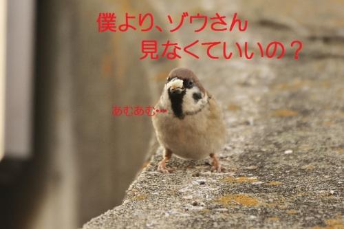 040_20151219033801fa1.jpg