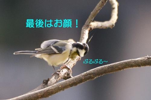 050_201511272259210ee.jpg