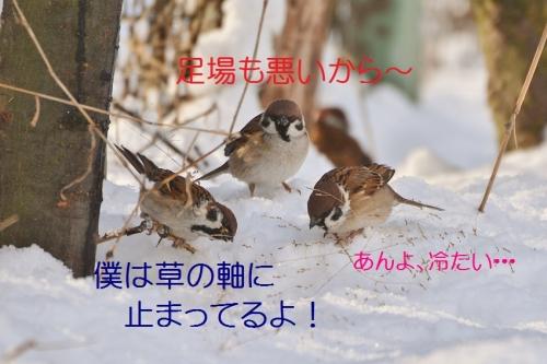 100_201601201931063e5.jpg