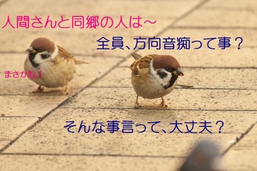 120_2015122519103169c.jpg