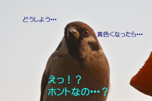 120_201601172135243f1.jpg