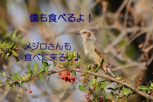 120_20160124224433376.jpg