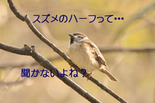120_2016030319213564e.jpg