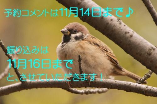 123_201511010438322fb.jpg