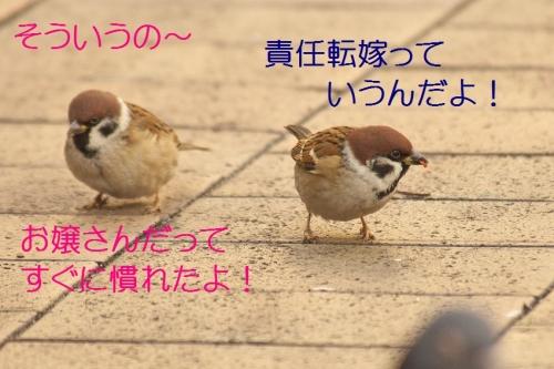 130_20151225191032f75.jpg