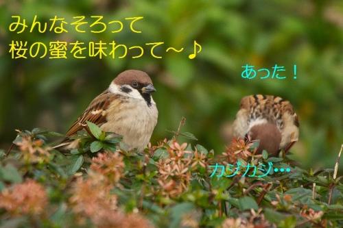 130_20151230215612505.jpg