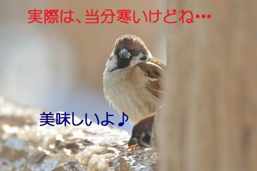 140_2016012716342922a.jpg