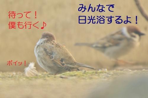 140_20160224220637ec2.jpg