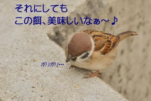 150_20151214213141cac.jpg